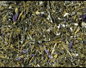 Herbata sencha z Kombuchą i śliwką ume 1 kg.